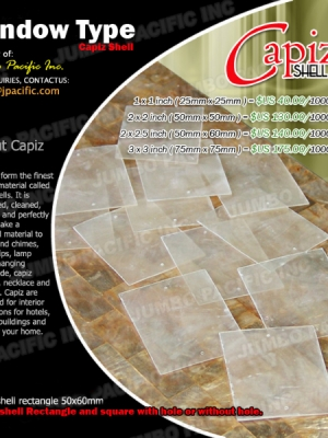 Window Type Capiz Shell Chips