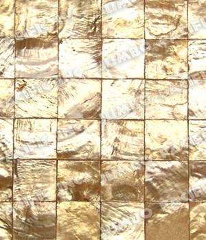 Gold 1x1 inch Square Blocking Design
