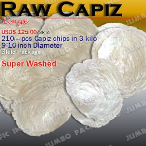 Raw Capiz Shells